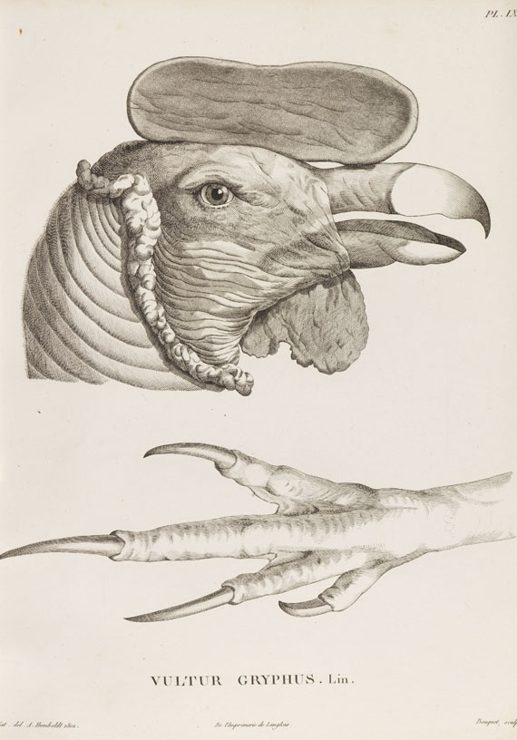 Alexander von Humboldt - Bonpland, Recueil d'observations de zoologie. -