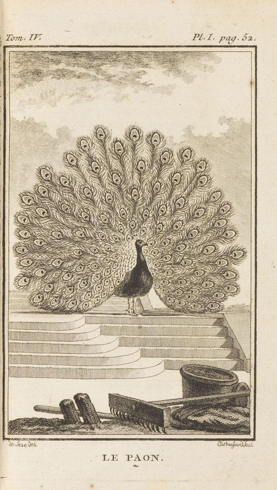 Georges Louis Lerclerc Buffon - Histoire naturelle des oiseaux. 63 Bde. -