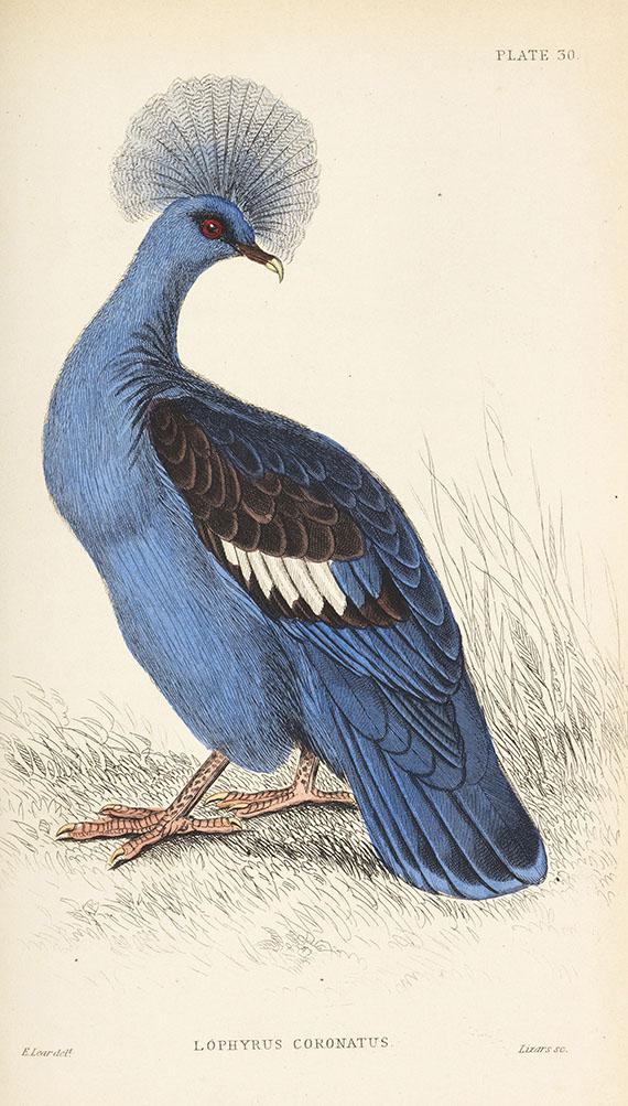 William Jardine - Naturalist's Library, 40 Bde. -