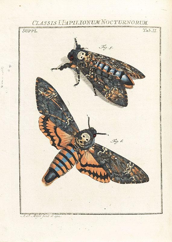August Johann Rösel von Rosenhof - Insecten-Belustigung, 4 Bde., dazu Kleemann, Beyträge zur Naturgeschichte, 2 Bde. in 1, zusammen 5 Bde. - Weitere Abbildung