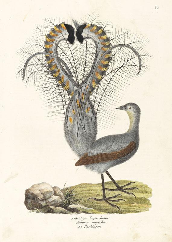 Heinrich Rudolf Schinz - Naturgeschichte Vögel. 2 Bde.