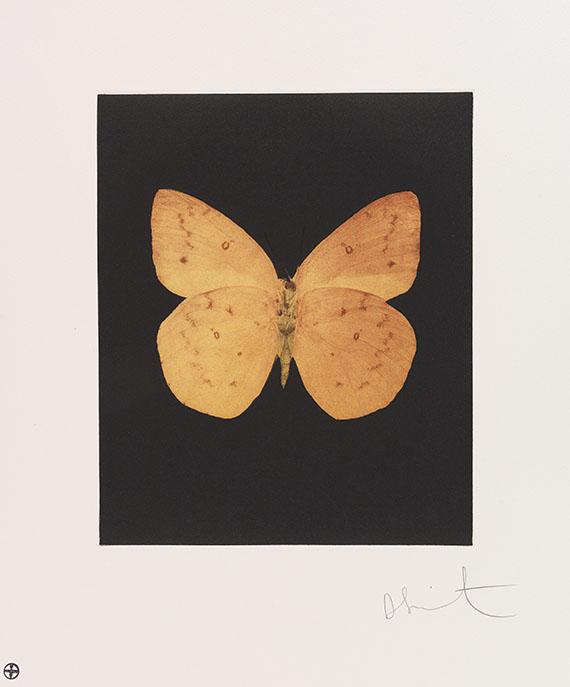 Damien Hirst - Butterfly Etching Portfolio (Tribulation, Eternal Rest, Prosperity, Emerge, Regeneration, Renewal, Fate, Reveal, Spirit, Hope, Providence, Life) - Weitere Abbildung