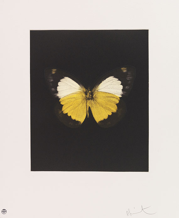 Damien Hirst - Butterfly Etching Portfolio (Tribulation, Eternal Rest, Prosperity, Emerge, Regeneration, Renewal, Fate, Reveal, Spirit, Hope, Providence, Life)