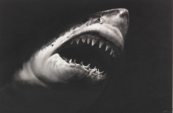 Robert Longo - Untitled (Shark 15)