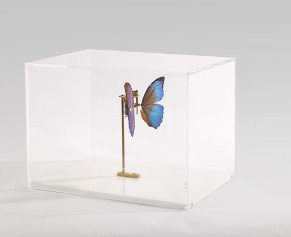 Rebecca Horn - Schmetterling - Weitere Abbildung