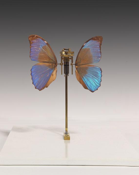 Rebecca Horn - Schmetterling