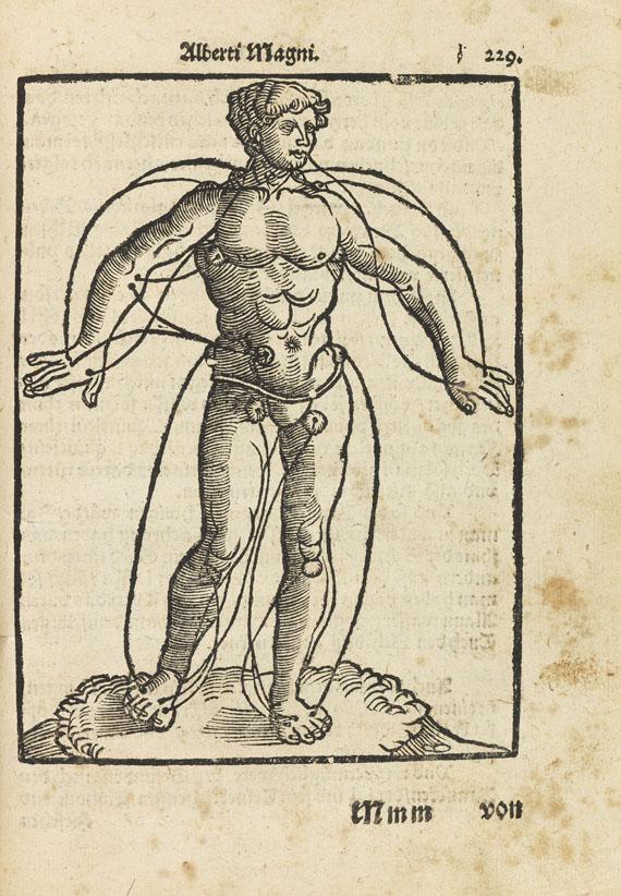 Hans Daubmann - Artzneybuch. Fast wunder köstlich