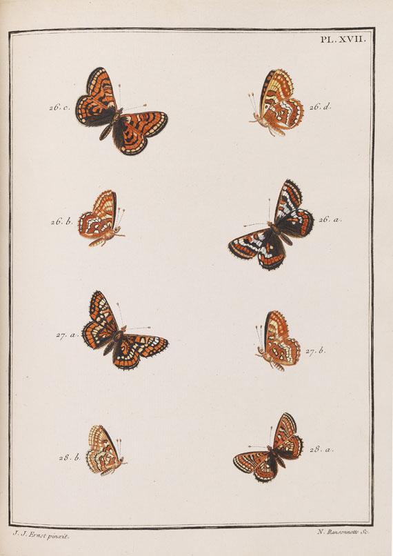 Jacques Louis Florentin Engramelle - Papillons d'Europe - Weitere Abbildung