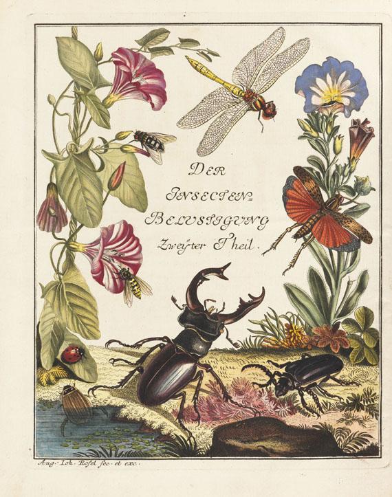 Augustin Johann Rösel von Rosenhof - Insecten-Belustigung. 4 Bde., 2 Erg. + 1 Beigabe