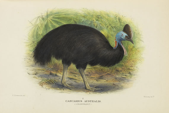 Gregory McAlister Mathews - Birds of Australia. 12 Bände