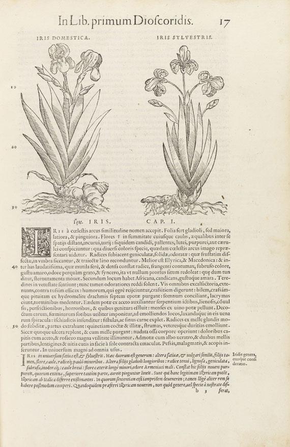 Pietro Andrea Mattioli - Kräuterbuch