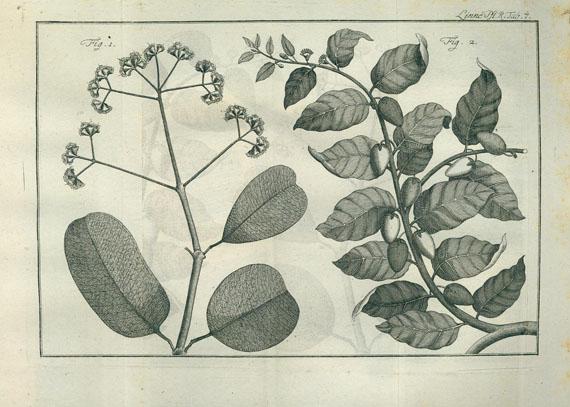 Carl von Linné - Vollständiges Pflanzensystem. 10 Bde.