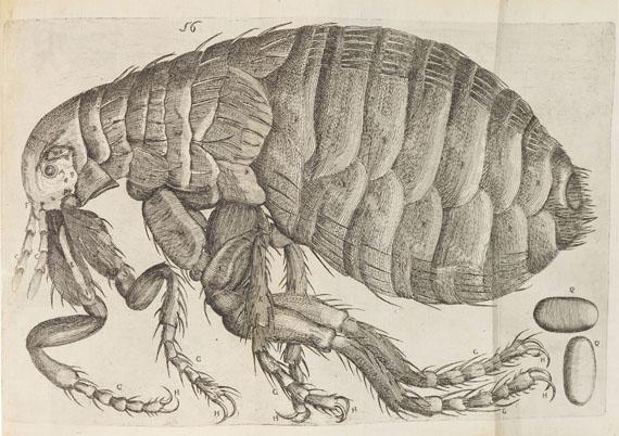 Philipp Bonanni - Observationes circa viventia