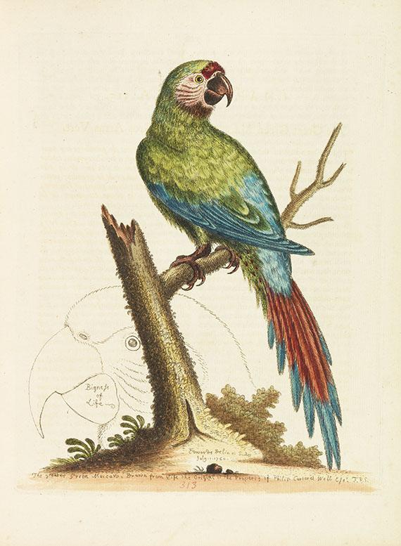 George Edwards - Histoire naturelle d'oiseaux. 4 Bände - Dabei: Glanures d'histoire naturelle. 3 Bände