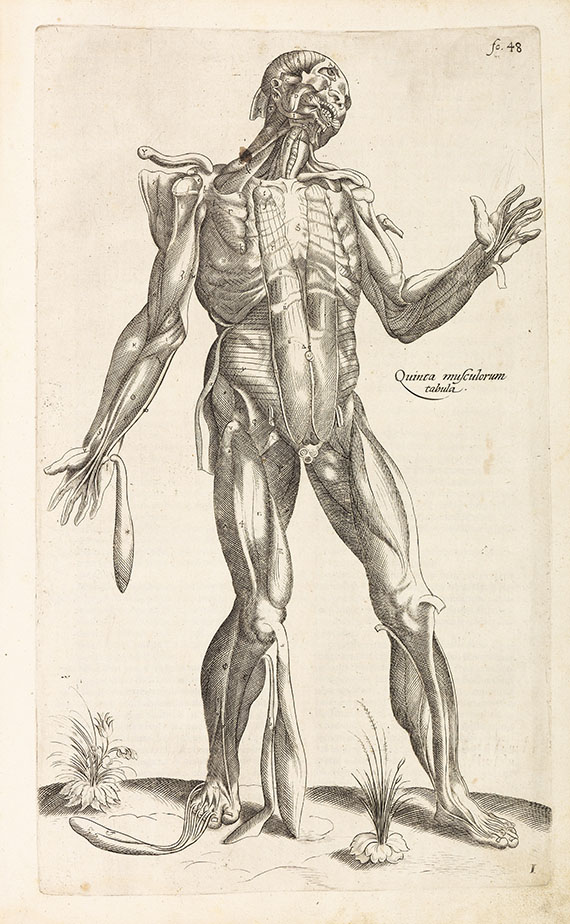 Andreas Vesalius - De humani corporis fabrica