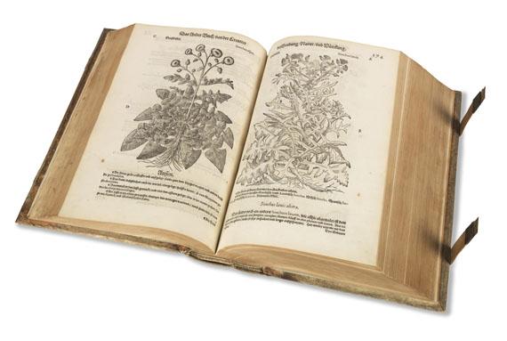 Pietro Andrea Mattioli - New Kreüterbuch