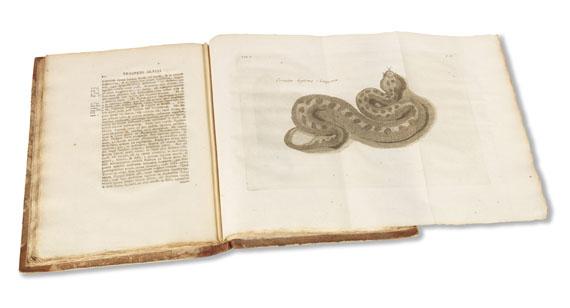 Prospero Alpini - Historiae Aegypti naturalis. 2 Bände