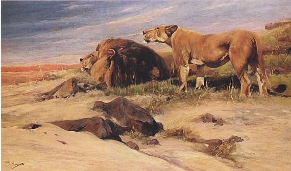 Wilhelm Kuhnert - Löwen in der Savanne