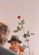 Joseph Beuys - Ohne die Rose tun wir's nicht
