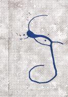 Polke, Sigmar - Farbserigrafie