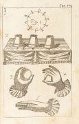 Giusepp Antonio Alberti - Numerici fatti. 1747