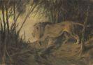 Wilhelm Kuhnert - L�we, zum Flusse ziehend
