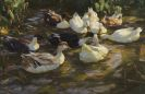 Max Liebermann - Enten im Teich (Enten am Bach)