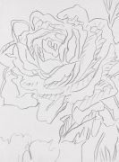 Andy Warhol - Rose