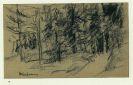 Max Liebermann - Sign. Orig.-Kohlezeichnung (Tannenwald)