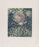 Max Ernst - Beckett, Aus einem aufgegebenen Werk