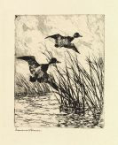 Frank W. Benson - Etchings and Drypoints. 4 vol. (von 5). 1917-29