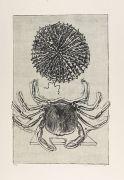 Max Ernst - Histoire naturelle. 2 Bde.