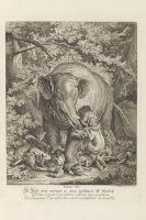 Johann Elias Ridinger - Lehrreiche Fabeln aus dem Reiche der Thiere