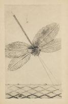 Max Ernst - Histoire naturelle