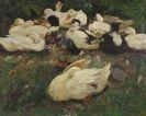 Alexander Koester - Erwachende Enten (Entenfamilie)