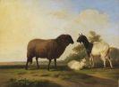 Franz van Severdonck - Schaf, Ziege und Zicklein vor weiter Landschaft