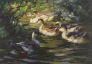 Alexander Koester - Sechs Enten auf dem Wasser unter Uferstr�uchern