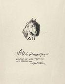 Alfred Kubin - Ali, der Schimmelhengst