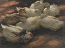 Alexander Koester - Enten am Boden lagernd