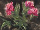 Max Kaus - Blumen