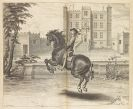 Cavendish, William - A general system of horsemanship. 2 Bde.