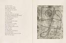 Hans Arp - Vers le blanc infini