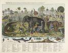 Heinrich Keller - Zonen-Gemälde, 3. Auflage 1854. Plano.