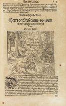 Petrus de Crescentiis - New Feldt und Ackerbaw