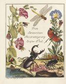 August Johann Rösel von Rosenhof - Insecten=Belustigung. 4 Bde., 2 Erg. + 1 Beigabe