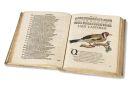 Nicolai Baerii - Ornithophonia