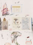 Cy Twombly - Natural History Part I (No. VI)