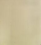 Joseph Marioni - White Painting