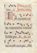 Manuskripte - Notenblatt auf Pergament. 16. Jh.