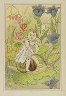 Lothar Meggendorfer - Prinz Liliput